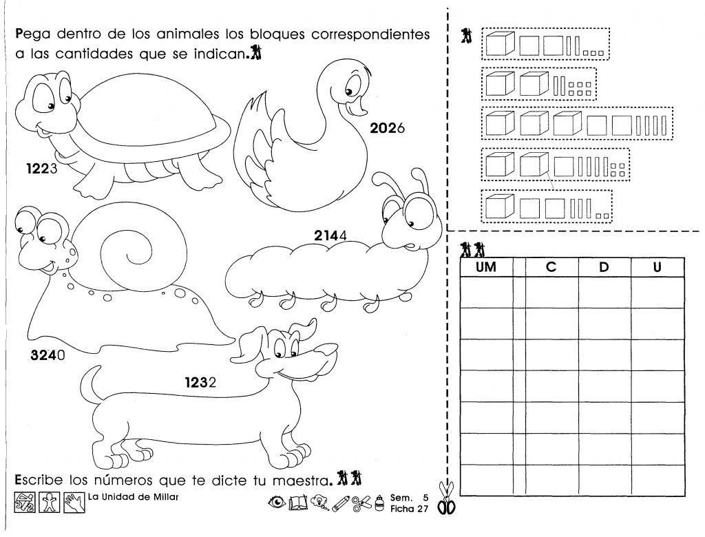Actividades para tercer grado de primaria para niños